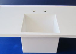 Laboratory Sinks and Benches